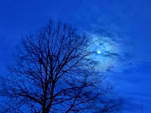 Mond 30.05.20, 4