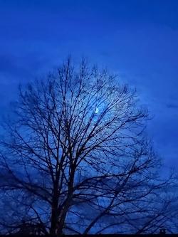Mond 30.05.20, 2