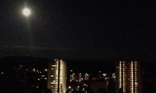 Mond Tscharni