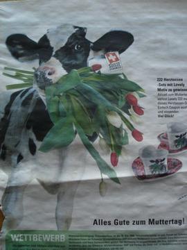 Tulpen fürs Mütterlein