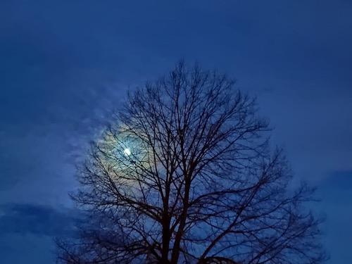 Mond 30.05.20, 1