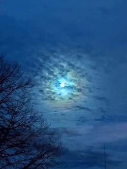 Mond 30.05.20, 3